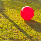 rules-of-the-red-rubber-ball-2