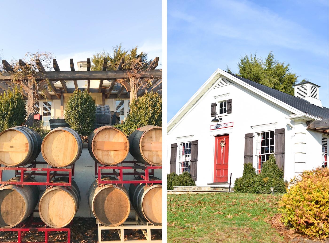 Zephaniah Farm Vineyard Review