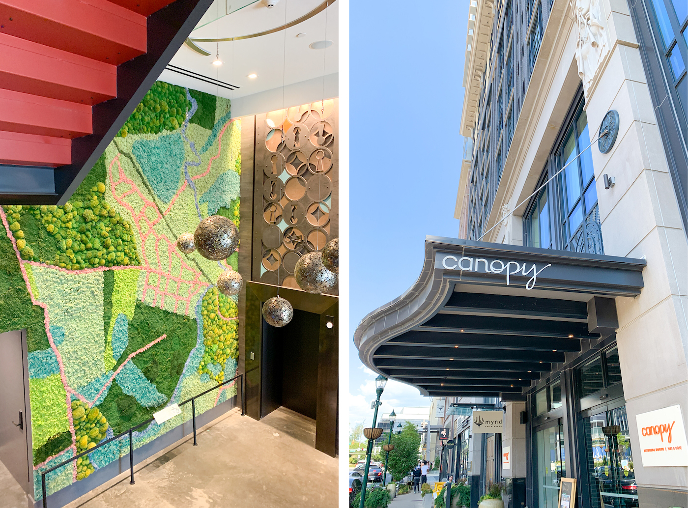 canopy hotel north Bethesda review